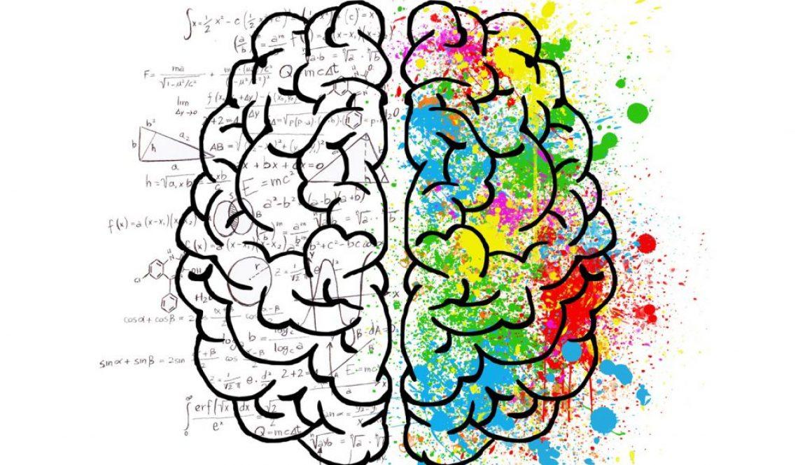 Farbintuition_Brain